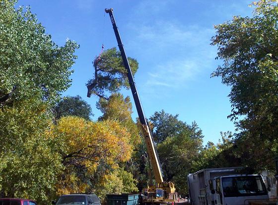 photo of Eldorado crane