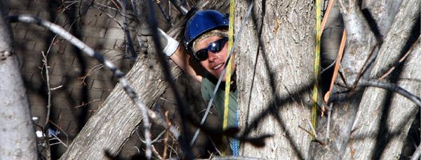 Jason Kennedy behind a tree
