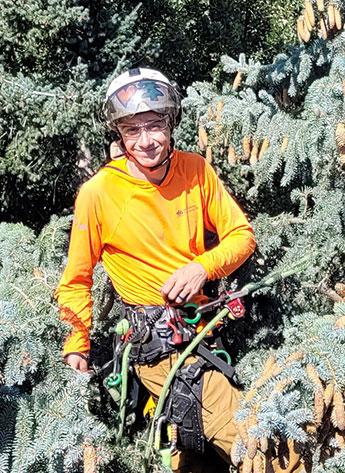 Evan Jones cutting trees